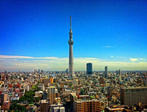 【特集】東京から地域を支える