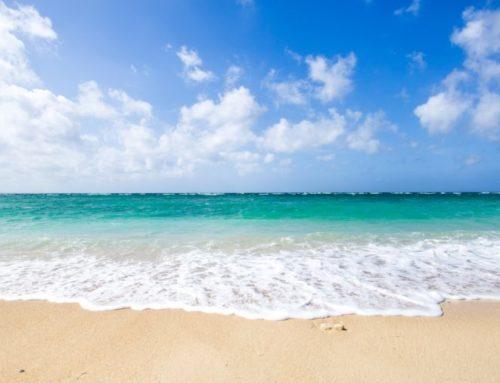 【特選求人】月イチで沖縄生活!?地方創生に関わるエンジニア大募集。ふるさと納税をテクノロジーで進化させる「ビッグゲート」の人材募集