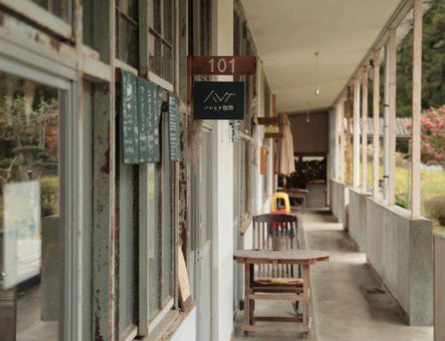 空き家活用実例⑭  廃校に明かりを灯し、地域の拠点をつくる/ハレとケ デザインホステル(三好市)