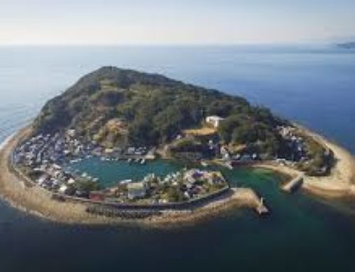 【徳島県の空き家活用④】 古き良きまちなみが残るレトロアイランド・出羽島 小さな島が重伝建地区になった理由