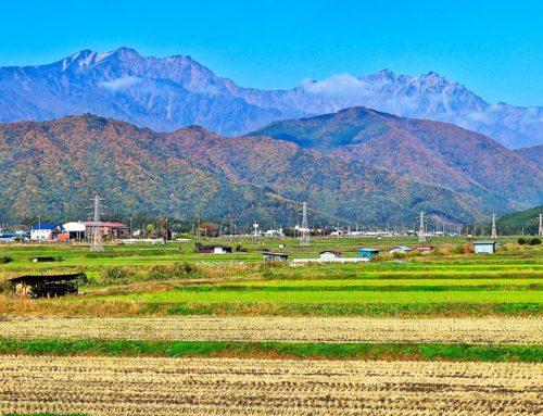 【2020年最新版】地方移住の人気ランキング発表!長野県が3年連続の1位。2位に大躍進の広島県。