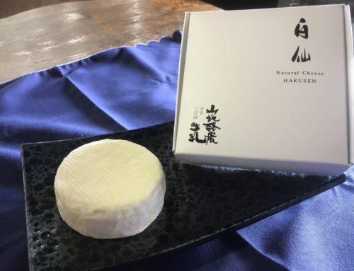 【岩手】田野畑山地酪農牛乳株式会社 希少な山地酪農牛乳からつくるブランドチーズ「白仙」のクラウドファンディングをスタート!開始から5日で280万円の支援が集まる!