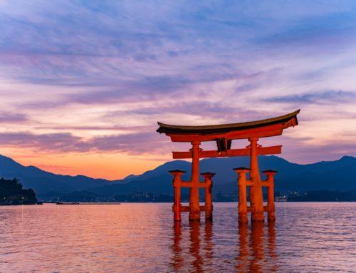 【自社求人】広島に移住して、瀬戸内の地域マーケティング事業に携わりませんか?